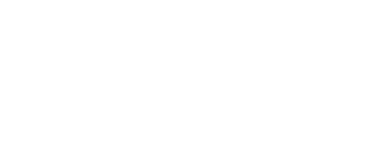 Carve Consulting